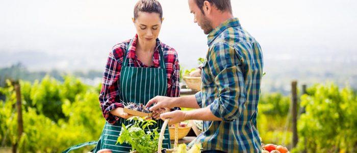 man and woman checking veggies